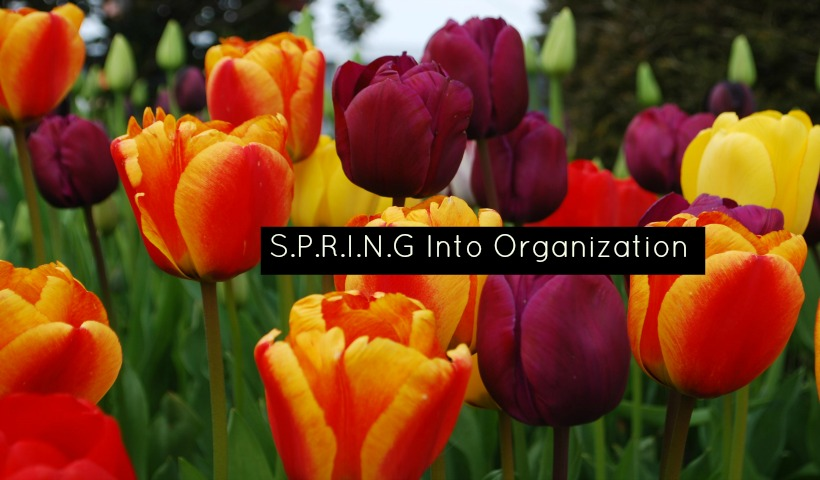 Spring Into Being Organized
